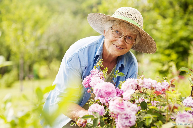 Saber usar o tempo livre é a chave para envelhecer saudável e feliz